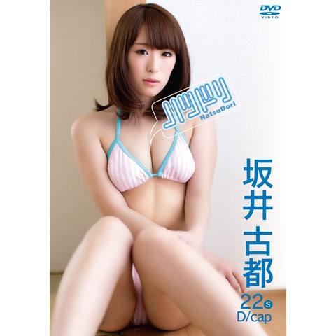 坂井古都 ハツドリ