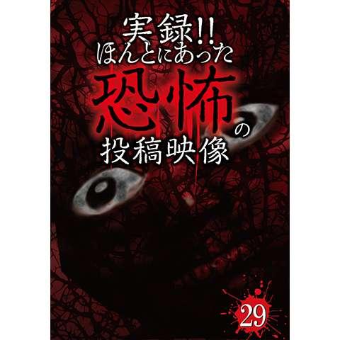 実録!!ほんとにあった恐怖の投稿映像 29