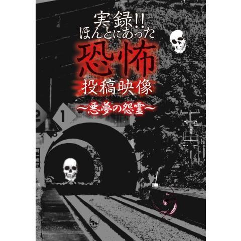 実録!!ほんとにあった恐怖の投稿映像~悪夢の怨霊~
