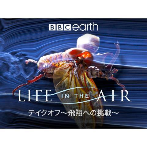 テイクオフ〜飛翔への挑戦〜
