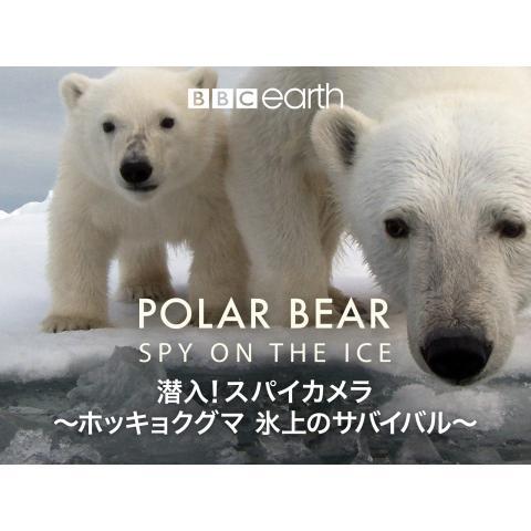 潜入!スパイカメラ ~ホッキョクグマ 氷上のサバイバル~